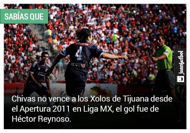 Chivas no vence a Xolos desde el Apertura 2011 en Liga MX. El gol lo anotó Héctor Reynoso.