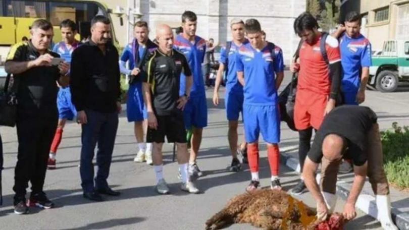 ¿Sacrificó una oveja la selección de Irak para alejar la mala suerte?