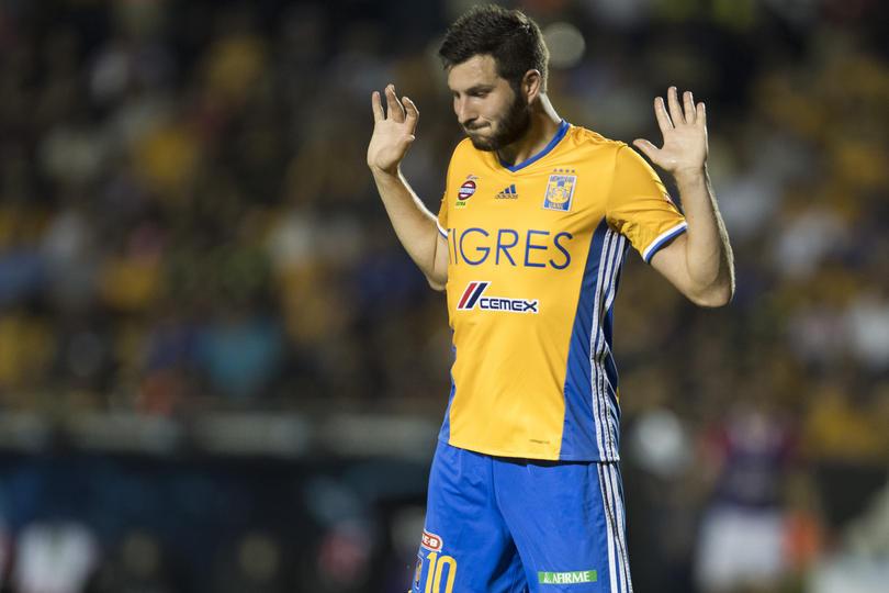 André-Pierre Gignac podría no ver acción el fin de semana cuando Tigres visite a Pumas en Ciudad Universitaria.