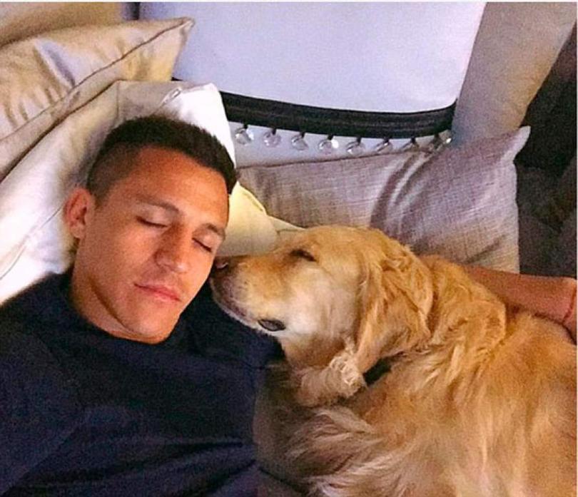 Alexis Sánchez le puso Atom a su perro, en honor a Oliver Atom de los Supercampeones.