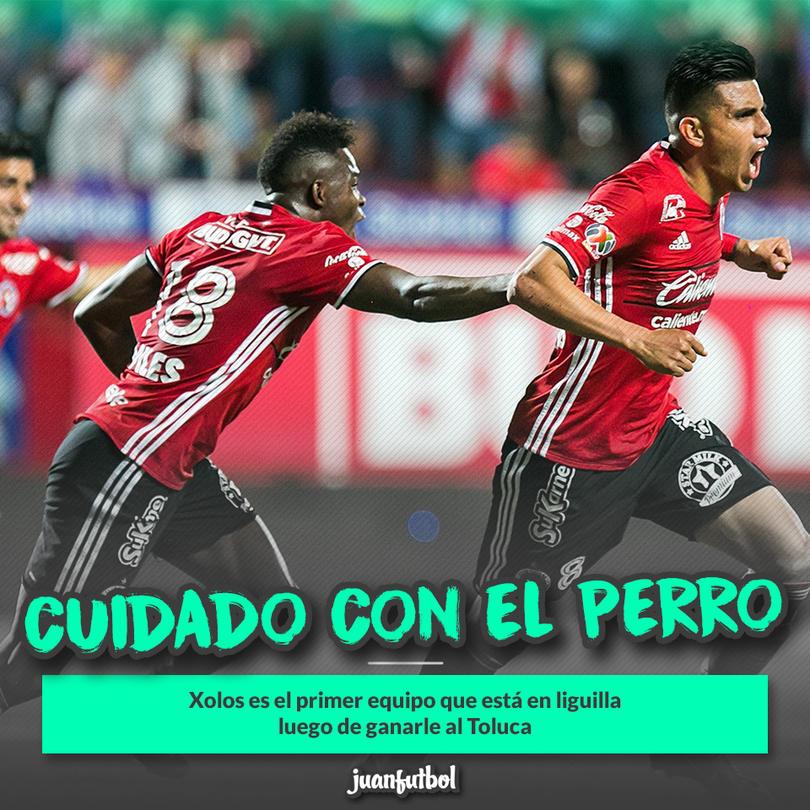 Xolos ya está en liguilla tras vencer al Toluca