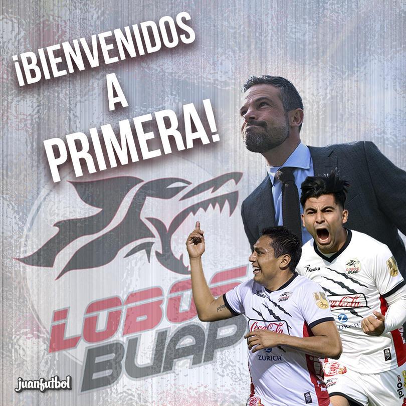 Lobos a Primera