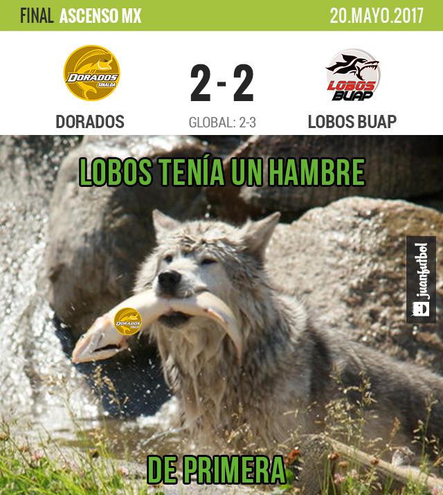 Lobos BUAP consiguió el Ascenso luego de ganarle a Dorados