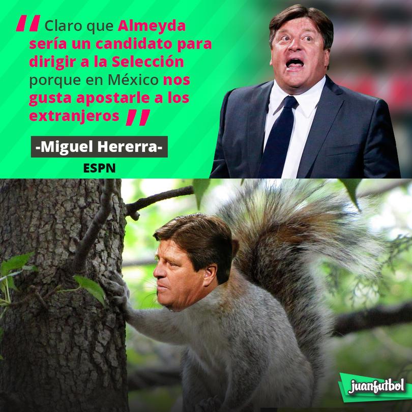 El Piojo Herrera habló así de Matías Almeyda