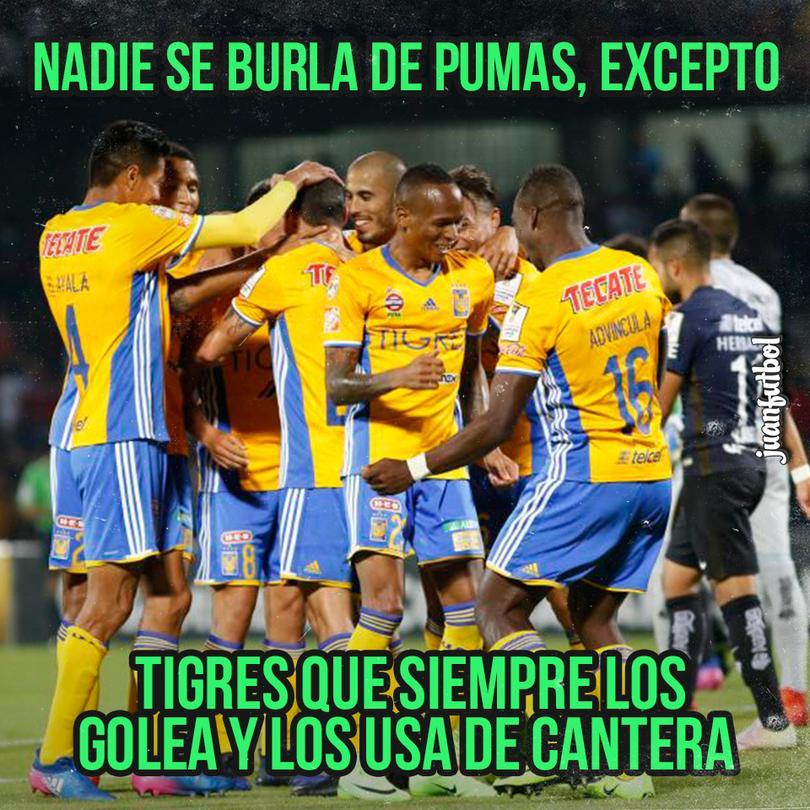 Hasta Tigres