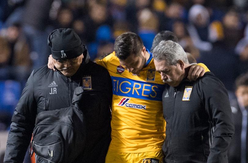 Aún no se sabe si vaya a jugar contra Querétaro