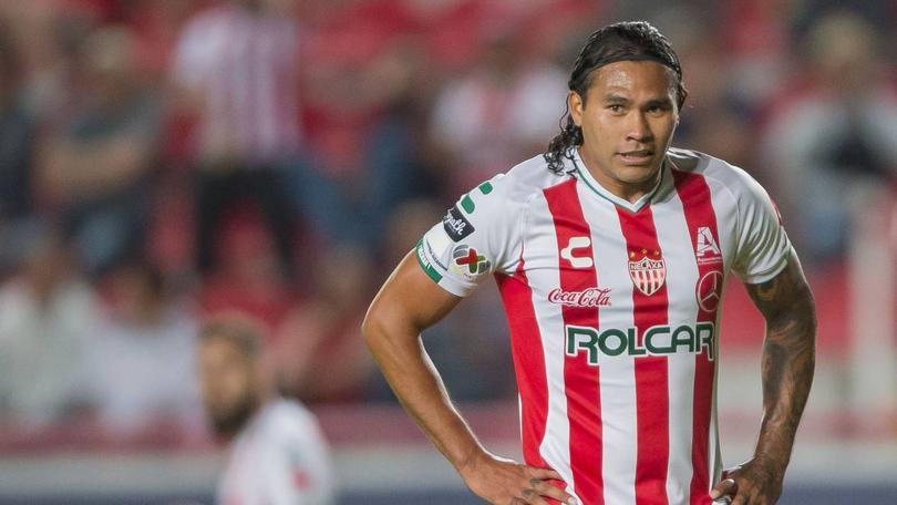Gullit Peña