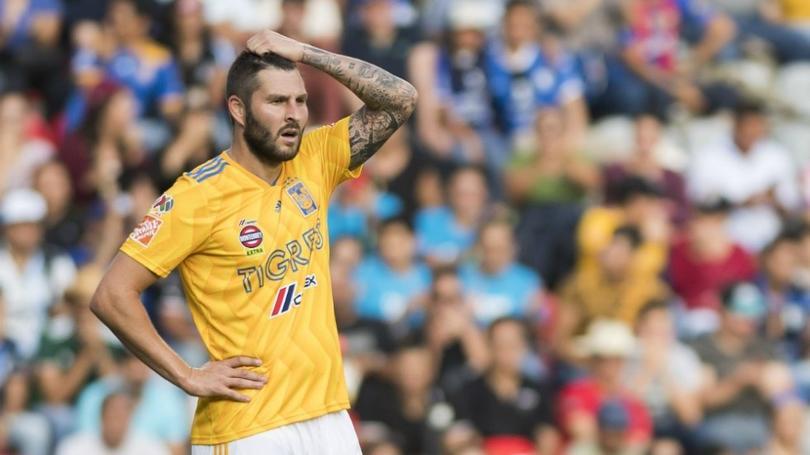Gignac será baja en Tigres una semana más