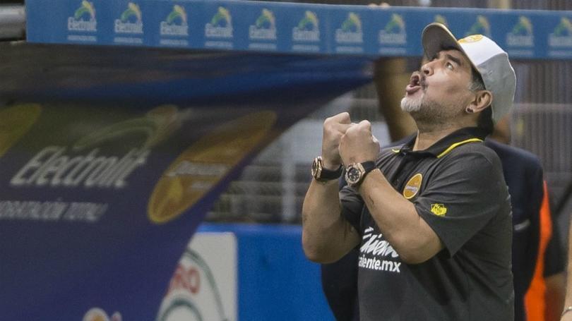Maradona amenaza con dejar Dorados tras finalizar el Clausura 2019