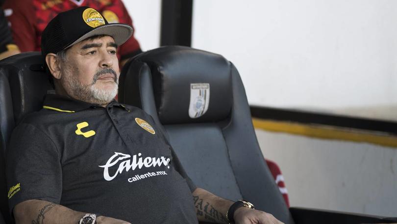 Diego Armando Maradona podría seguir el próximo torneo con Dorados