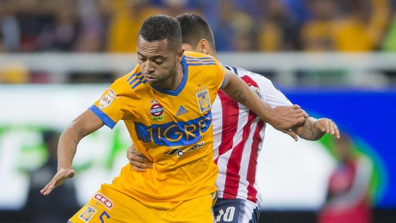 Rafael Carioca con Tigres