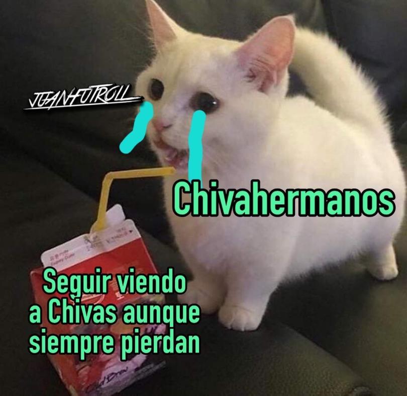 Santos vs Chivas