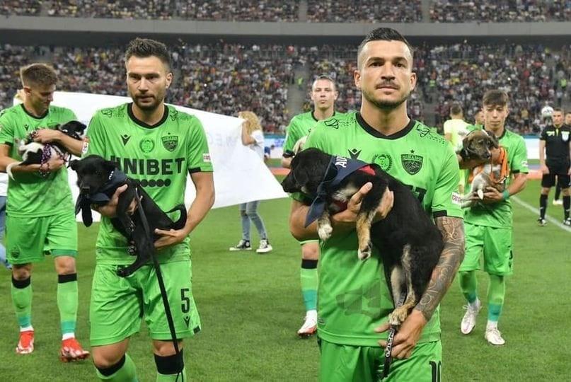 Dinamo de Bucarest apoya la adopción canina